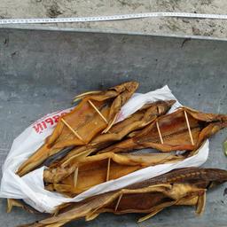 Покупатель собирался попотчевать деликатесом гостей на свадьбе сына. Фото пресс-службы Нижнеобского теруправления Росрыболовства