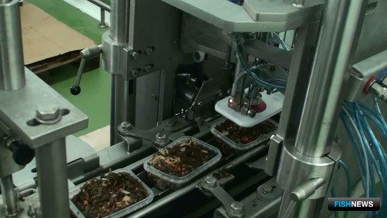 Cabinplant - автоматизированная линия для переработки морских водорослей и производства салатов