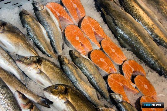 Участники рынка беспокоятся за судьбу поставок лосося из Норвегии