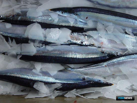 Министерство сельского хозяйства поддержало идею о рыбных биржах
