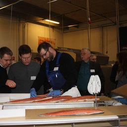 Salmon Showhow-2011