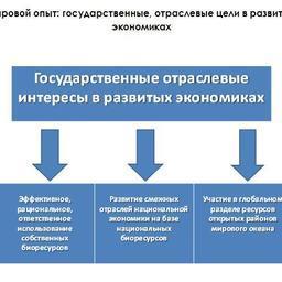 Рис. 2. Мировой опыт: государственные, отраслевые цели в развитых экономиках