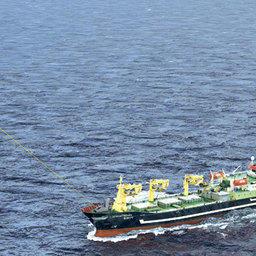Применение паруса на переходах позволяет экономить до 50 процентов топлива