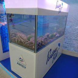 Объединенный стенд рыбопромышленников и Росрыболовства с первого дня привлекает внимание посетителей