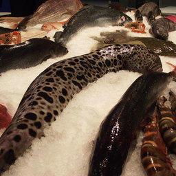 Международная рыбохозяйственная выставка «Интерфиш-2010»
