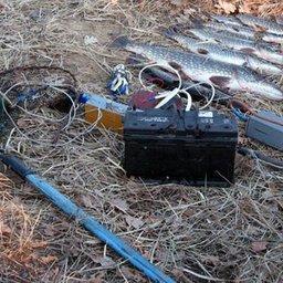 Электроудочка и браконьерский улов. Фото с сайта zkturr.ru