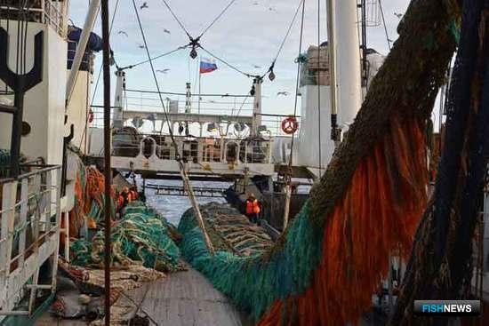 Сельдевая путина в Беринговом море