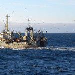 О состоянии российского рыбопромыслового флота и промыслового судостроения