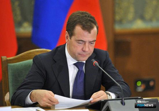 Дмитрий МЕДВЕДЕВ. Фото пресс-службы Правительства РФ