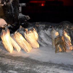 В Лабытнанги полицейские обнаружили в остановленных вездеходах более 2,2 тыс. экземпляров муксуна. Фото пресс-службы УМВД России по Ямало-Ненецкому автономному округу