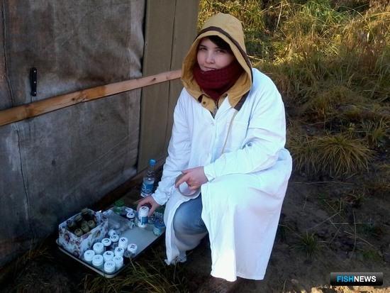 Ребята овладели практическими методами отцеживания икры и спермы у живых лососей. Фото пресс-центра МГТУ