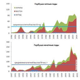 Многолетняя динамика вылова горбуши в Сахалино-Курильском регионе, 1946-2015 гг. Рисунок пресс-службы СахНИРО
