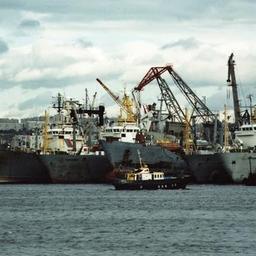 Росрыболовство видит приоритеты в портах