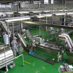 На Сахалине запустили современный завод по производству рыбных консервов