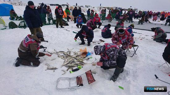 «Сахалинского льда» хватило на всю Россию