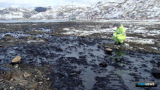 Ученые провели первое обследование побережья в месте аварии «Надежды». Фото пресс-службы СахНИРО