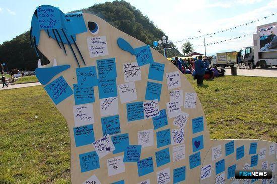 Все желающие смогли написать на стикерах пожелания сивучу и приклеить их на деревянную фигуру этого морского животного. Фото с сайта Кроноцкого заповедника