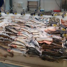 Стоимость рыбы будут зависеть от импортеров