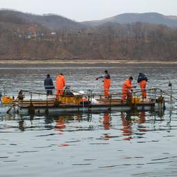 Минвостокразвития доработает карту рыбоводных участков в ДФО