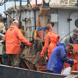 «Рыбака прибрежного лова» предложили включить в список профессий и должностей для прохождения альтернативной службы