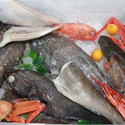 Российские рыба и другие морепродукты на выставке в Циндао