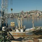Правкомиссия поддержала создание рыбного кластера в Приморье