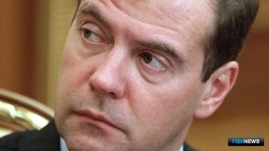 Председатель Правительства РФ Дмитрий МЕДВЕДЕВ. Фото – пресс-службы Правительства РФ.