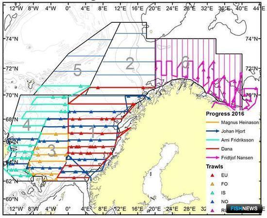 Маршруты судов участников международной экосистемной съемки в северных морях в апреле-июне 2016 г. Фото пресс-службы ПИНРО