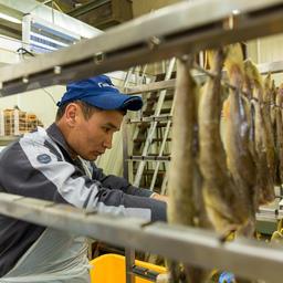 Рыбная кухня «Фабрики вкуса»