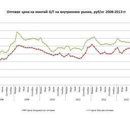 Колебания оптовой цены на минтай б/г на внутреннем рынке в 2008-2013 гг.