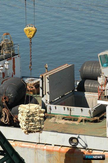 Лососевая путина 2009. Рыба доставлена в порт Владивостока