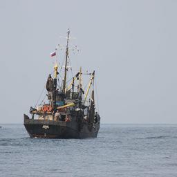 ФАС теряет доверие рыбацкого сообщества
