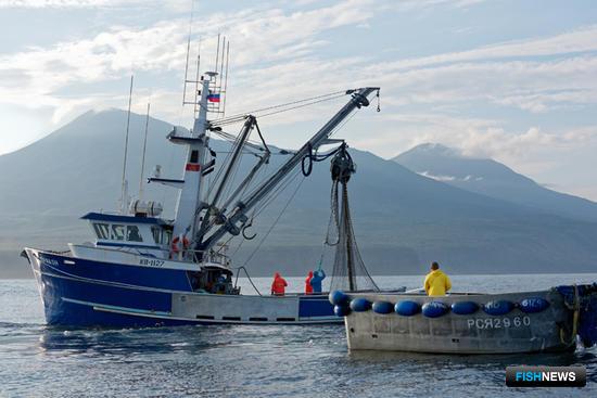 В этом году «Курильский рыбак», традиционно работающий на добыче лосося ставными неводами, начал активно осваивать кошельковый лов. Фото предоставлено предприятием
