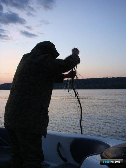 Рыбоохрана нуждается в увеличении штата
