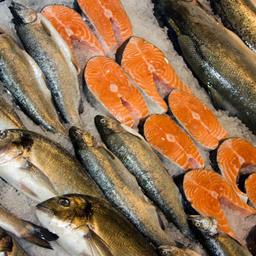 Минвостокразвития упорно отправляет рыбу на биржу