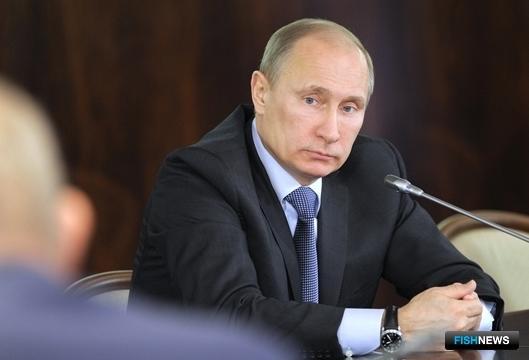 Владимир Путин на встрече с представителями общественных объединений рыболовов. Фото пресс-службы Правительства РФ.