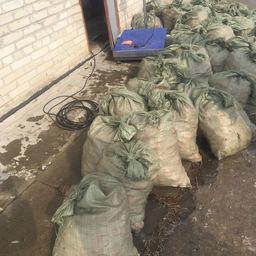Мешки с креветкой. Фото пресс-группы Пограничного управления ФСБ России по Приморскому краю.
