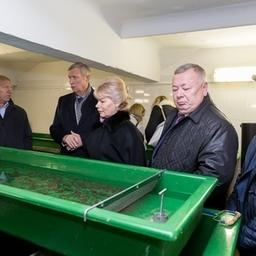 Прудовое рыбоводство попало в поле зрения сенаторов. Фото пресс-службы Совета Федерации.