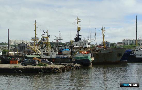 Прибрежная квота должна «работать» на свой регион