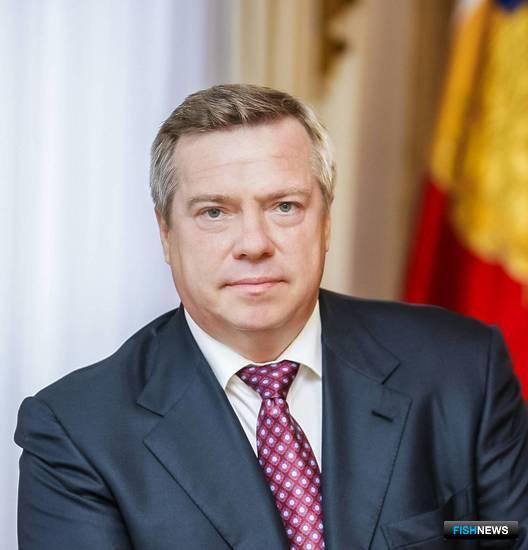 Губернатор Ростовской области Василий Голубев. Фото пресс-службы правительства региона