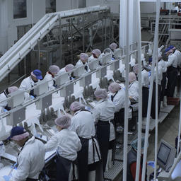 Рыбопромышленный холдинг «КАРАТ» открыл в Мурманской области береговую перерабатывающую фабрику. Фото РК «КАРАТ»