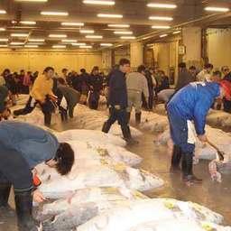 Рыбный рынок Цукидзи. Токио, апрель, 2007 г.