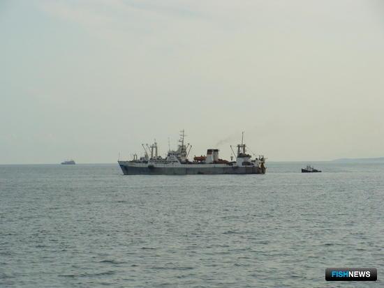 Рыбаки пожаловались премьеру на «подарок» от Росрыболовства