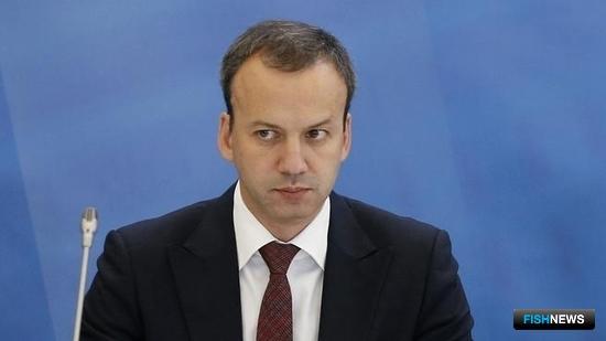Руководитель Комиссии Правительства РФ по вопросам развития рыбохозяйственного комплекса, вице-премьер Аркадий ДВОРКОВИЧ