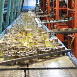 Производство консервов на рыбокомбинате «Островной»