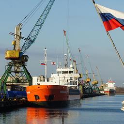 Калининградский рыбный порт вольется в состав «Нацрыбресурса». Фото с сайта правительства Калининградской области