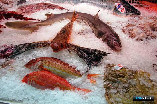 Для ввоза рыбопродукции понадобится информация о контракте