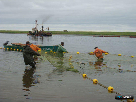 Депутаты планируют принять новые поправки к закону о рыболовстве
