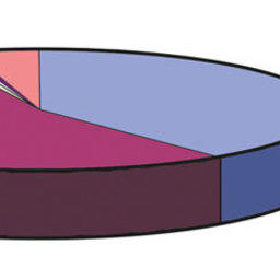 Рис. 3. Соотношение продукции хозяйств марикультуры в 2010 г. (1565,5 тонн)