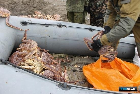 На побережье в районе села Лермонтовка трое местных жителей с использованием лодки и ловушек нелегально выловили 91 камчатского краба. Фото пресс-службы Погрануправления ФСБ России по Сахалинской области